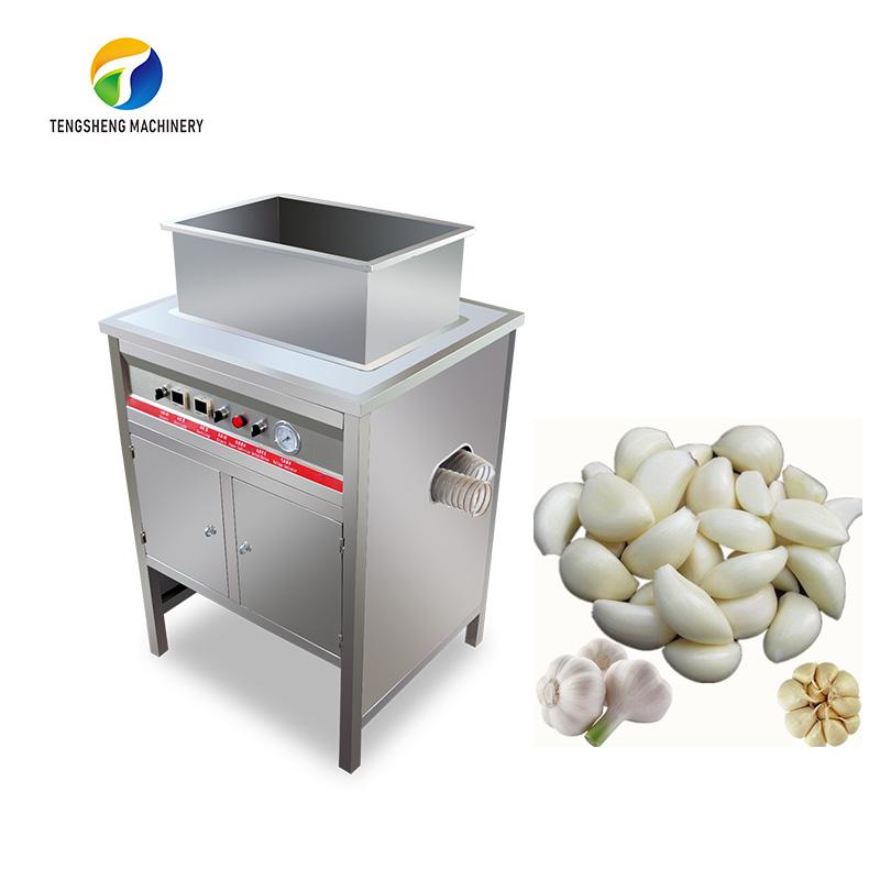 Large stainless steel garlic peeling peeler machine (TS-T300)