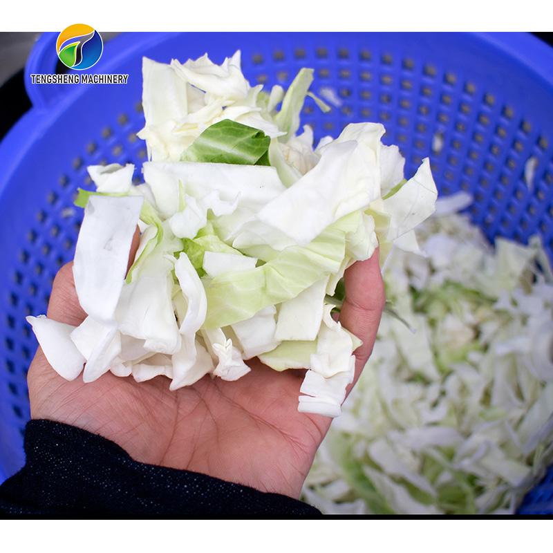 Fully automatic digital leaf vegetable dehydrator machine (TS-T10)