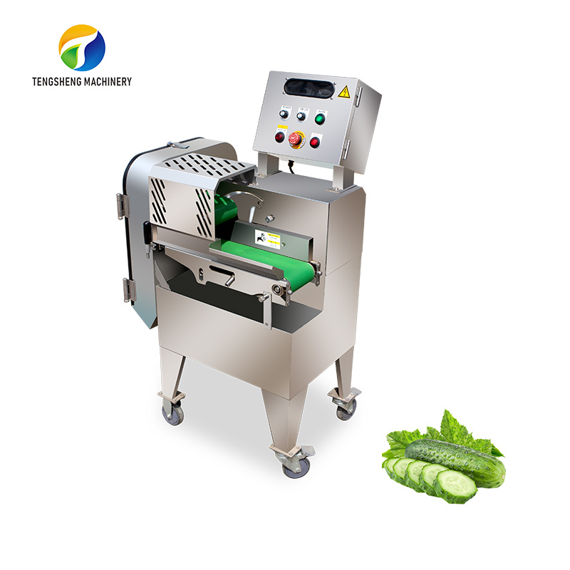 Stainless steel single-head electric vegetable cutter TS-Q115A