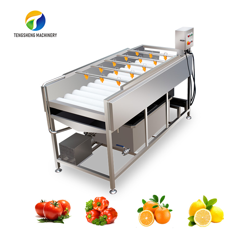 Large parallel brush fruit and vegetable cleaning machine TS-M100