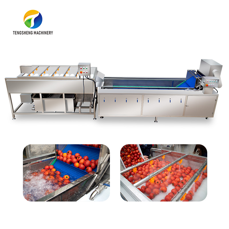Potato Vegetable fruit brush cleaning production line food processing equipment