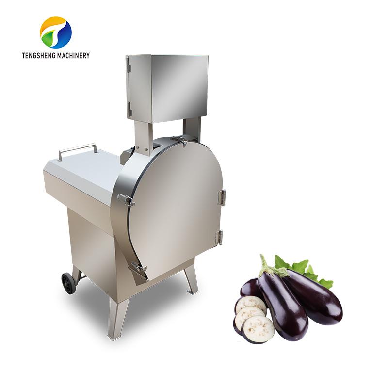 Taiwan Original Imported Vegetable Cutter Shredding Machine TS-Q120