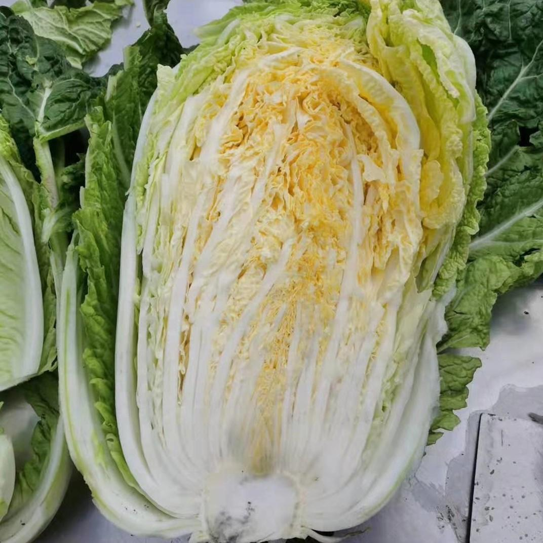 IQF Chinese Cabbage Cut Frozen Chinese cabbage