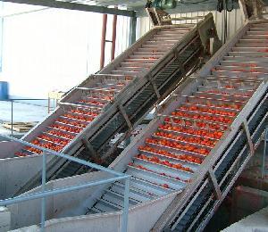 Tomato paste processing line