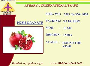 INDIAN FRESH POMEGRANATE EXPORTERS