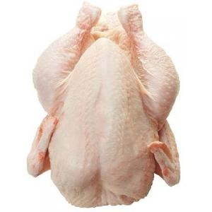 New Stock Halal Whole Frozen Chicken For Sale