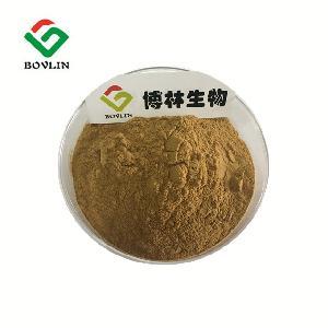 Echinacea Purpurea Extract Polyphenol Powder