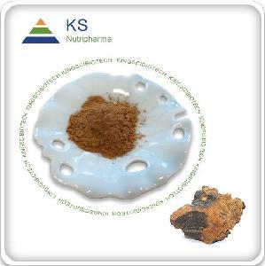 Chaga   Extract   Chaga  Powder
