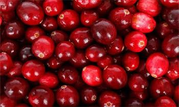 Ocean Spray introduces upcycled and clean label Cranberry Seeds