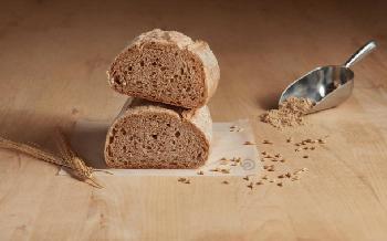 EverGrain debuts plant-based barley ingredients