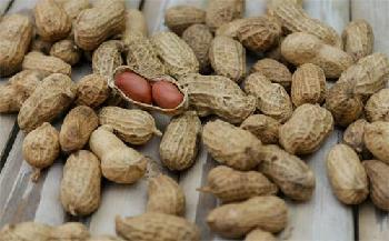 Ukko secures $40m to develop food allergy solutions
