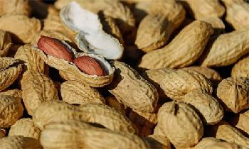 ADM agrees to pay $45m to settle peanut price-fixing allegations
