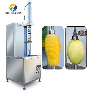 TS-P30 Industrial vertical single - head fruit and fruit peeling machine