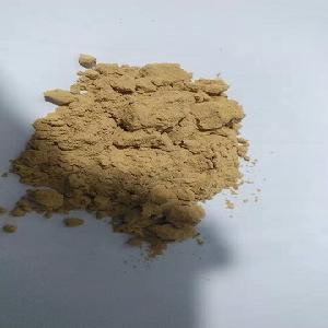 Factory Supply Natural free sample Kakadu Plum Extract 10% Vitamin C