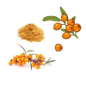 Sea Buckthorn Fruit Juice Powder
