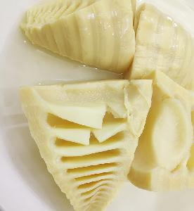 HALAL Certified Processed Bamboo Shoot Half