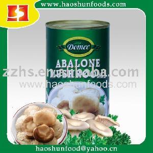 Fresh Crop Canned Abalone Mushroom