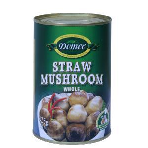 Tinned Mushroom Canned straw mushroom Hot Sale Straw Mushroom Season