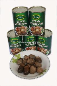 Branded Canned Food Products Canned Straw  Mushroom s  Mushroom  Product Type