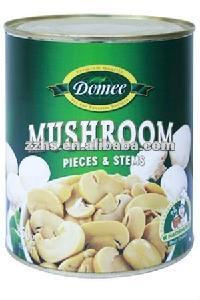 Mushroom Manufacturing Champignon Mushrooms In Tins Oyster Mushrooms