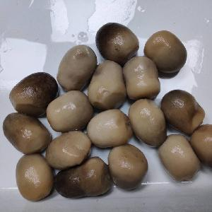 Canned Straw Mushroom Whole in Can