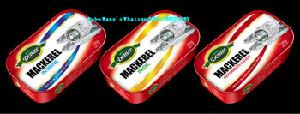 Canned food Canned  Fish  Canned  Sardine / Tuna /Mackerel in tomato sauce/oil/brine 125G 155G 425G with Halal, BRC