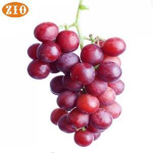 Ice Cream Flavours Manufacturer Grape Flavour Essence