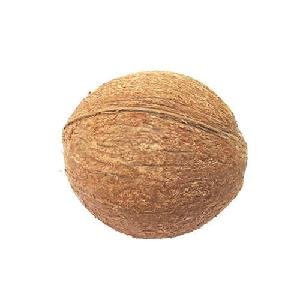 Quality Fresh Semi  Husk ed Matured Coconut