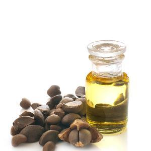 Natural Camellia Seed Oil