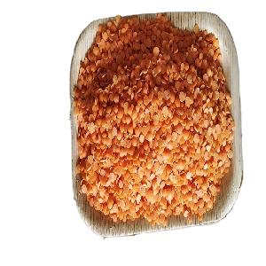 Export Quality Red Lentils Sale
