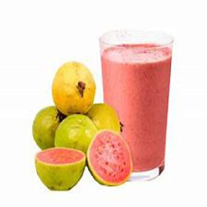 Top quality guava pulp export in india/What s app no:+91 9626995222
