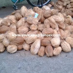 Fresh Semi Husked Coconut Exporters In India To Switzerland / Saudi Arabia / Israel