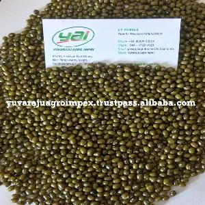 Best Packing & Best Cleaning For Green Moong Dal
