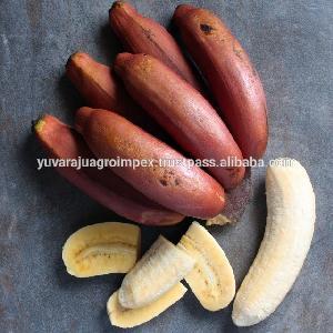 Indian Fresh Red Banana