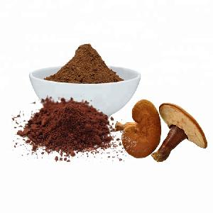 20%,30% Polysaccharides Chinese Herbal Medicine Reishi Extract Ganoderma Lucidum Powder
