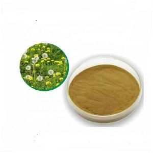 Herbal Medicine Organic Quality Dandelion Root Extract