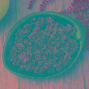 Free Sample High Quality Health Medicine  Herbal  Organic  Gynostemma   Tea