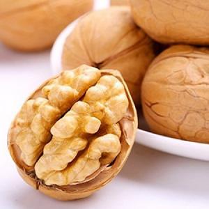 2017 corp A grade jumbo LH walnuts kernels
