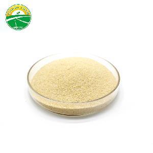 Chinese granulated garlic 40-60mesh