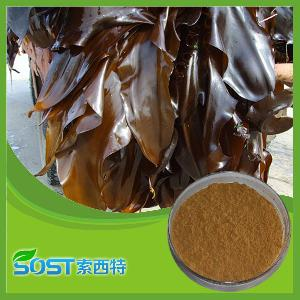 Natural Beauty Cosmetic Seaweed Extract Powder