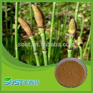 Chinese herbal medicine 7% organic silica horsetail extract by HPLC