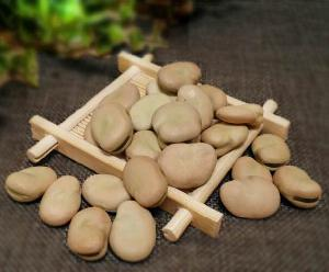 2020 crop Broad Beans/ Fava Beans price