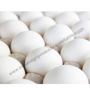 Good Quality Chicken Eggs