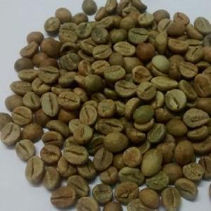 Export  Quality Robusta Coffeebean AA