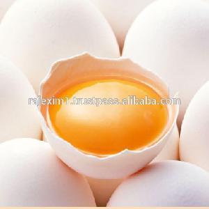 Best Price Of White Eggs to qatar
