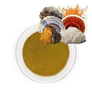Mushroom Mix Supplement - Reishi, Lion s mane, Chaga, Cordyceps, Maitake, Turkey tail