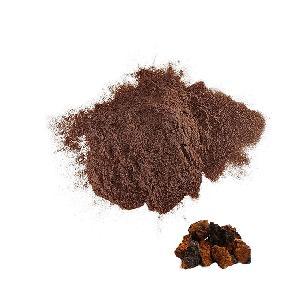 20% Beta Glucan Natural Mushroom Powder Organic Chaga Extract