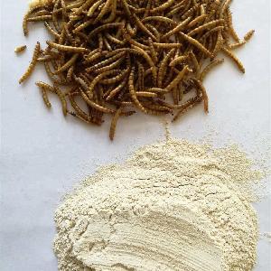 Royal  canin dog  food  mealworm powder    pet  feed additives