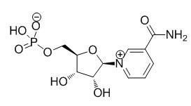 NMN β-Nicotinamide Mononucleotide