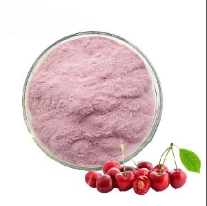 HALAL  certified factory acerola cherry extract organic acerola cherry extract powder acerol